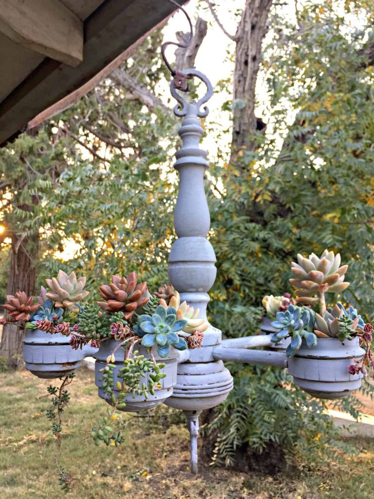 Vintage chandelier transformed into a unique planter for succulents by TV gardener Marlene Simon-Swoon Talent. As seen on Hallmark's Home & Family